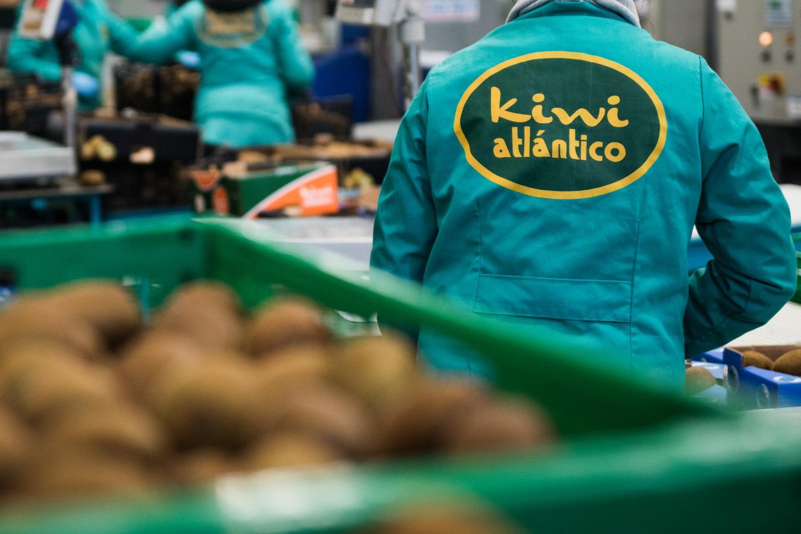 Kiwi Atlantico